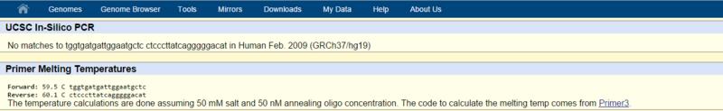 File:Screenshot (3)crop.png