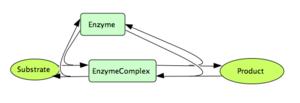 Simple Enzymatic Reaction