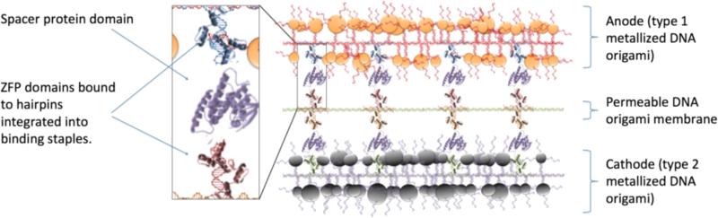 File:Nanobateryfinal.png