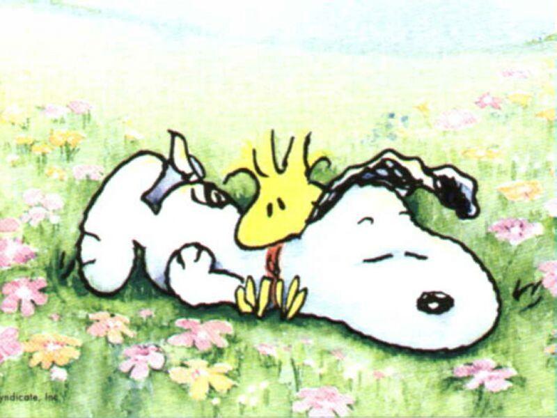 File:Snoopy.jpg