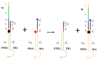 Figure 1. The irreversible binding between walker (W) and walker goal (WG). A ROX fluorophore (red star) was attached to the 5' end of each probe for walker goal (PWG) and a quencher (black cross) was attached to the 3' end of each walker. TR1, track 1. PTR1, probe for track 1. Curved regions shown on the probes were inserted into the origami.