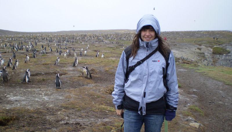 File:Pinguinos.jpg
