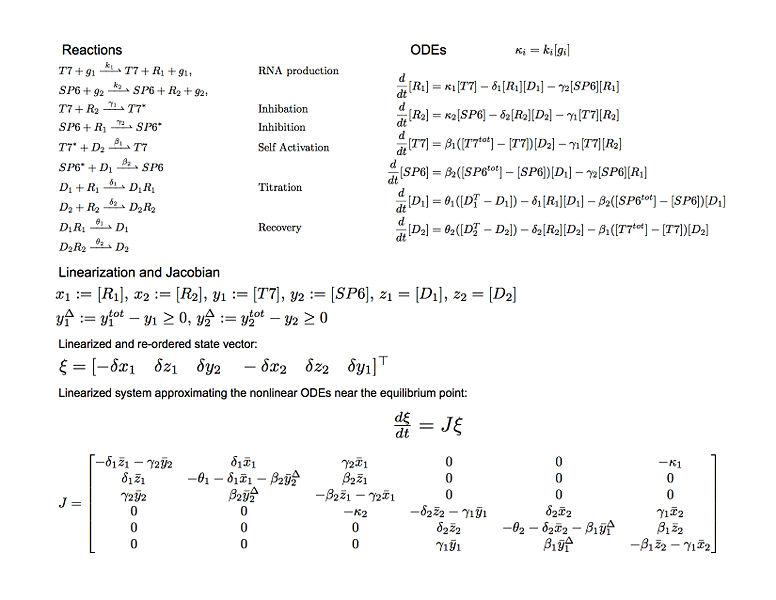 File:ToggleEquations.jpg