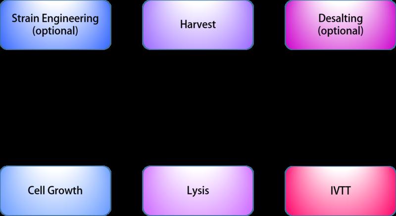 File:Construction of IVTT system.png