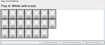 White self-cross