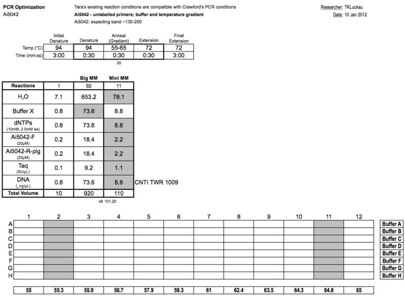 20120110 PCRc.png