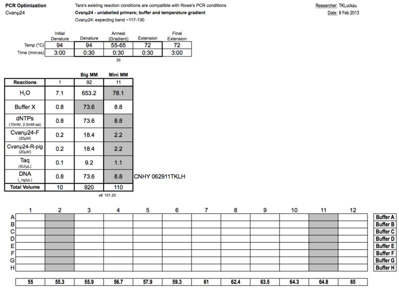 20130209 PCRa.png