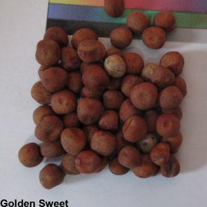 Golden Sweet Seed.jpeg