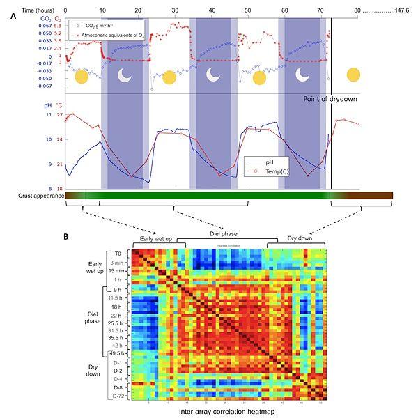 File:Rajeev et al 2013 Figure 1.jpg