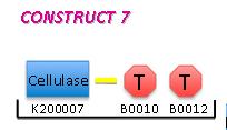 File:II09 M1 C7.jpg