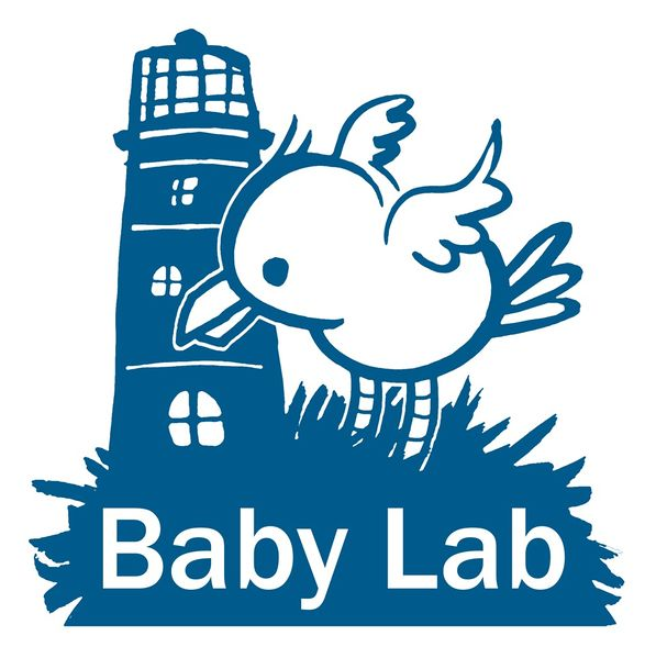File:Babylab5.jpeg