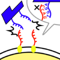 Thumbnail for version as of 10:11, 26 October 2013