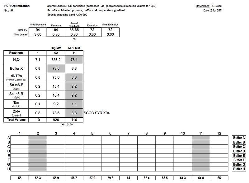 20110602 PCR.jpg