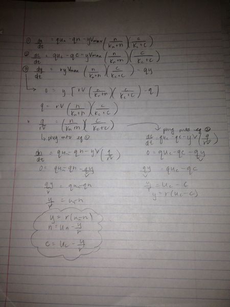 File:Calculations1.jpg