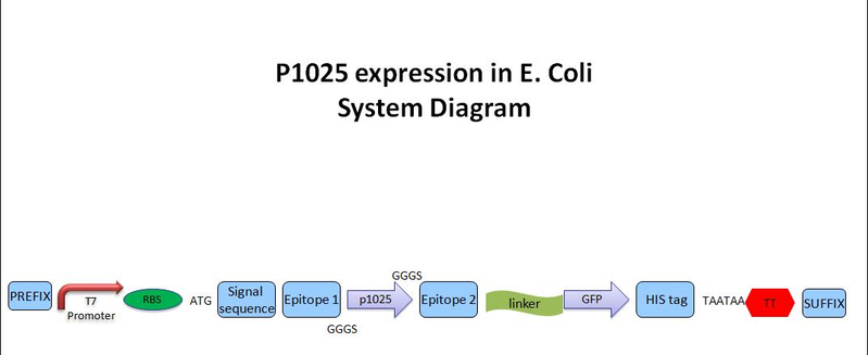 File:System diagram pic.jpg