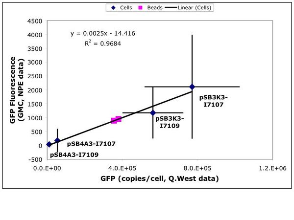 FP-0852-2 MEG calibration.pdf