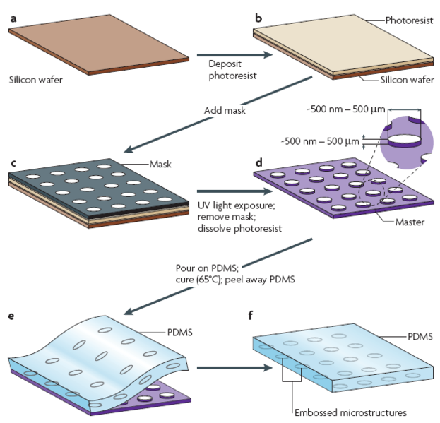 File:Soft-lithography-process-scheme.png