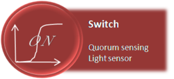 switch: light sensor & qs