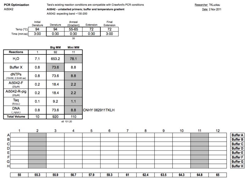 File:20111102 PCRb.png