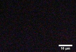 BIOMOD-TNJ-CrAu 2 2s.jpg