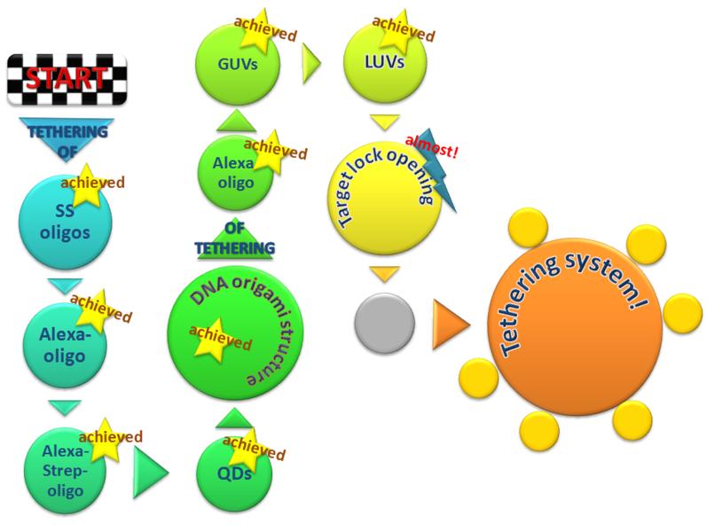 File:BM12 nanosaurs Path.png