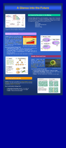 File:RSSE2007 ImperialCollege poster-7a 50dpi.png