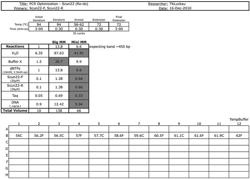20101216 PCR.jpg