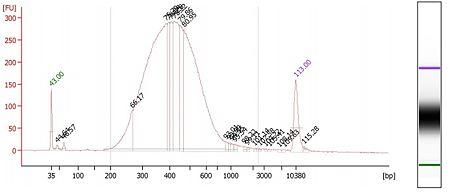 Bioanalyzer-skinks-plate1.jpg