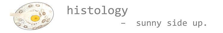 Histology banner 01.jpg