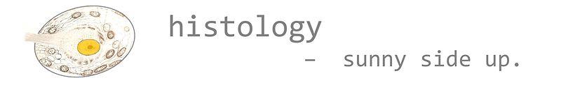 File:Histology banner 01.jpg