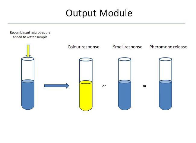Output module.JPG