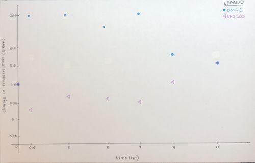ChangeinTranscription vs Time Leanne.jpg