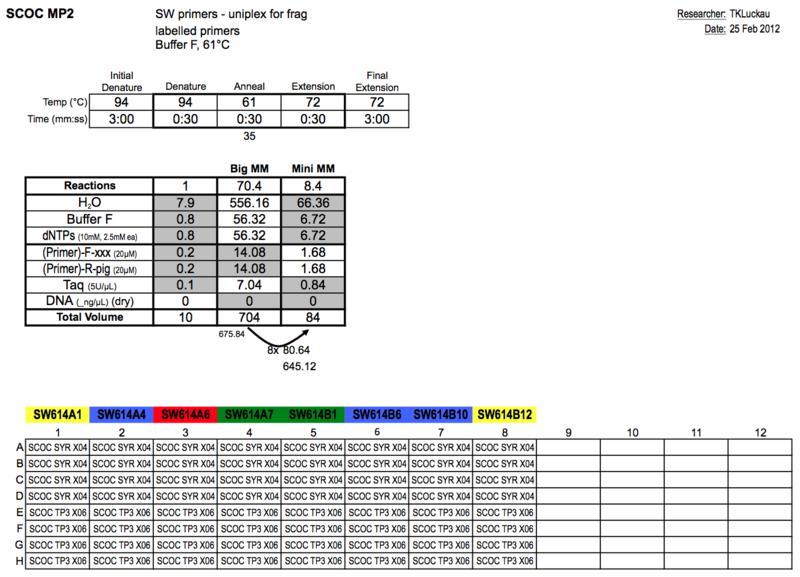 20130225 PCRa.png