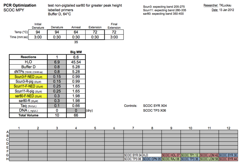 20120113 PCR.png
