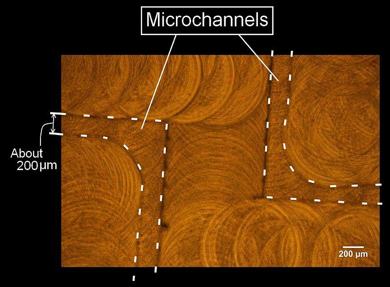 File:Microchannel.jpg