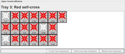 Red self-cross