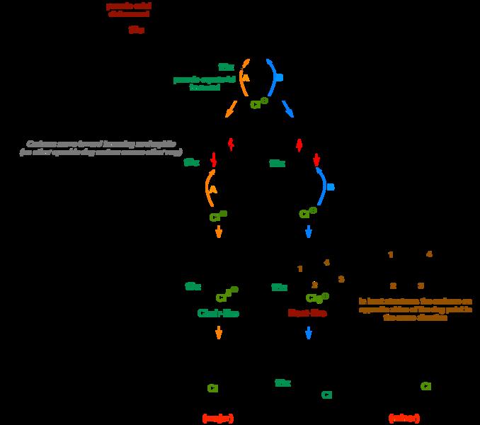 File:Cyclic Epox Opening Mech.png
