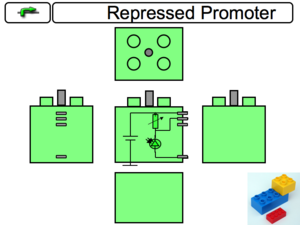 Repressed Promoter Component