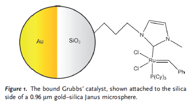 File:150701 Grubb's catalyst.png
