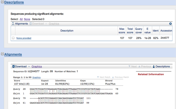 Figure 2: Example output of a bl2seq sequence alignment of EGFR exon 19 from HCC827 cells. Query = HCC827 and Sbjct = known EGFR exon 19 sequence.