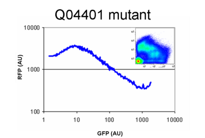 Functional mutant isolated from the library.  Mutation was found to weaken the RBS (~35% as strong as the original)