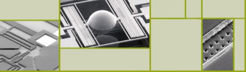 Biopoems header.jpg