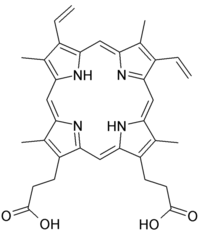 Protoporphyrin IX. Public domain image from Wikimedia Commons.