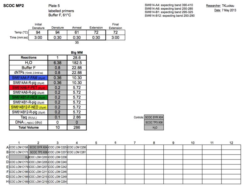 File:20130507 PCR.png
