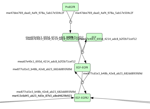 Figure 3: The start of the EGFR signaling cascade as coded in the Bidkhori et al. model and visualized using CellDesigner.