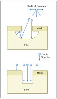 Ionic 4 Input Mask Example