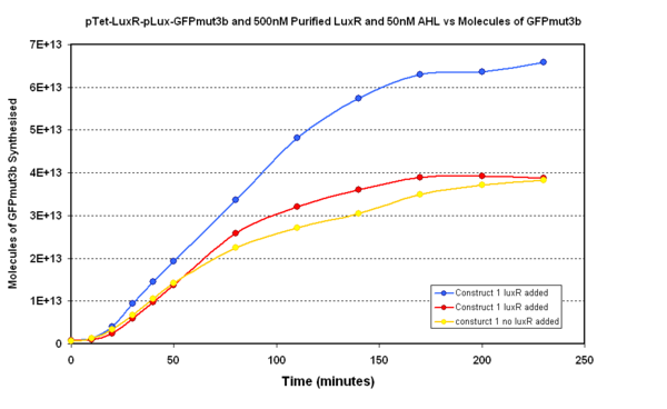 Fig.1.1: Shows 500nM of purified LuxR in the pTet-LuxR-pLux-GFPmut3b construct in vitro with 50nM of AHL present