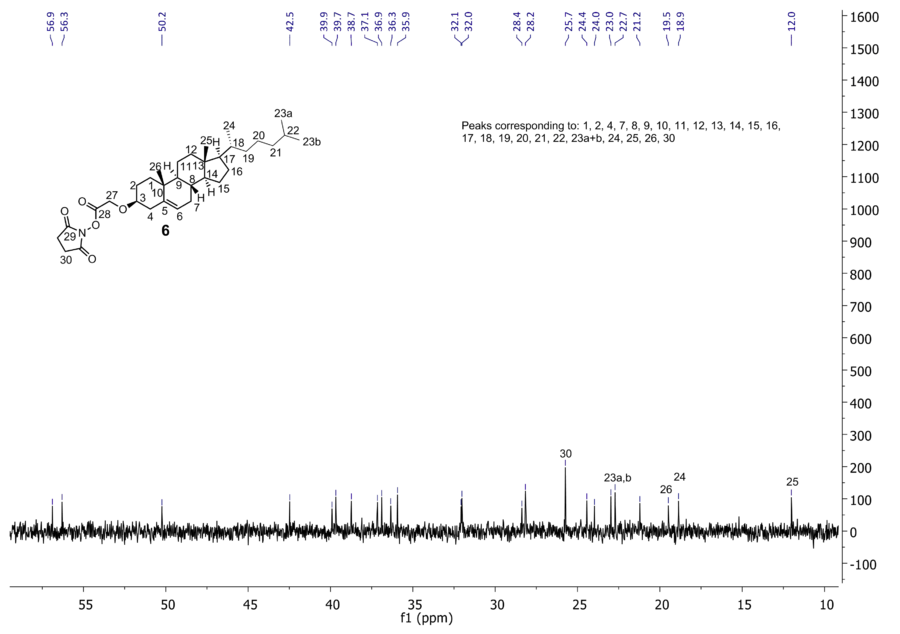 Zoom of 13C NMR of compound 6