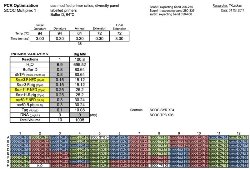 20111031 PCRc.png
