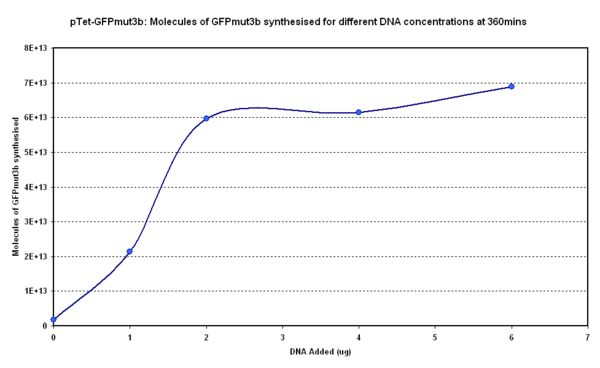 Fig.1.2:Molecules of GFPmut3b synthesised for each DNA Concentration in vitro, after 360 minutes